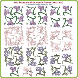 Iris February Birth Month Flower by Lindee Goodall CD
