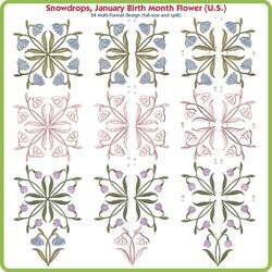Snowdrop January Birth Month Flower USA by Lindee Goodall