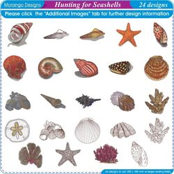 Hunting for Seashells by Morango Designs