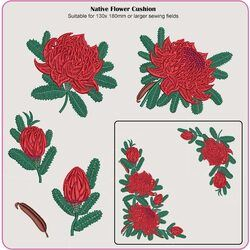 Waratah Floral Cushion 05 by Dawn Johnson